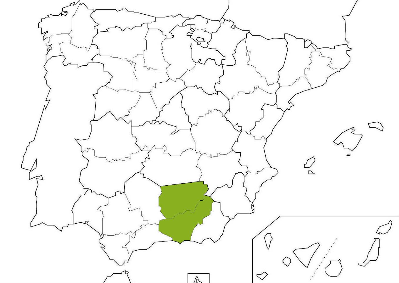 Huelva, Sevilla